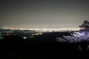 photo-4-2.jpg