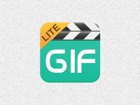 MP4等の動画ファイルからGIFアニメを作れる無料のMac用ソフト、PicGIF Lite